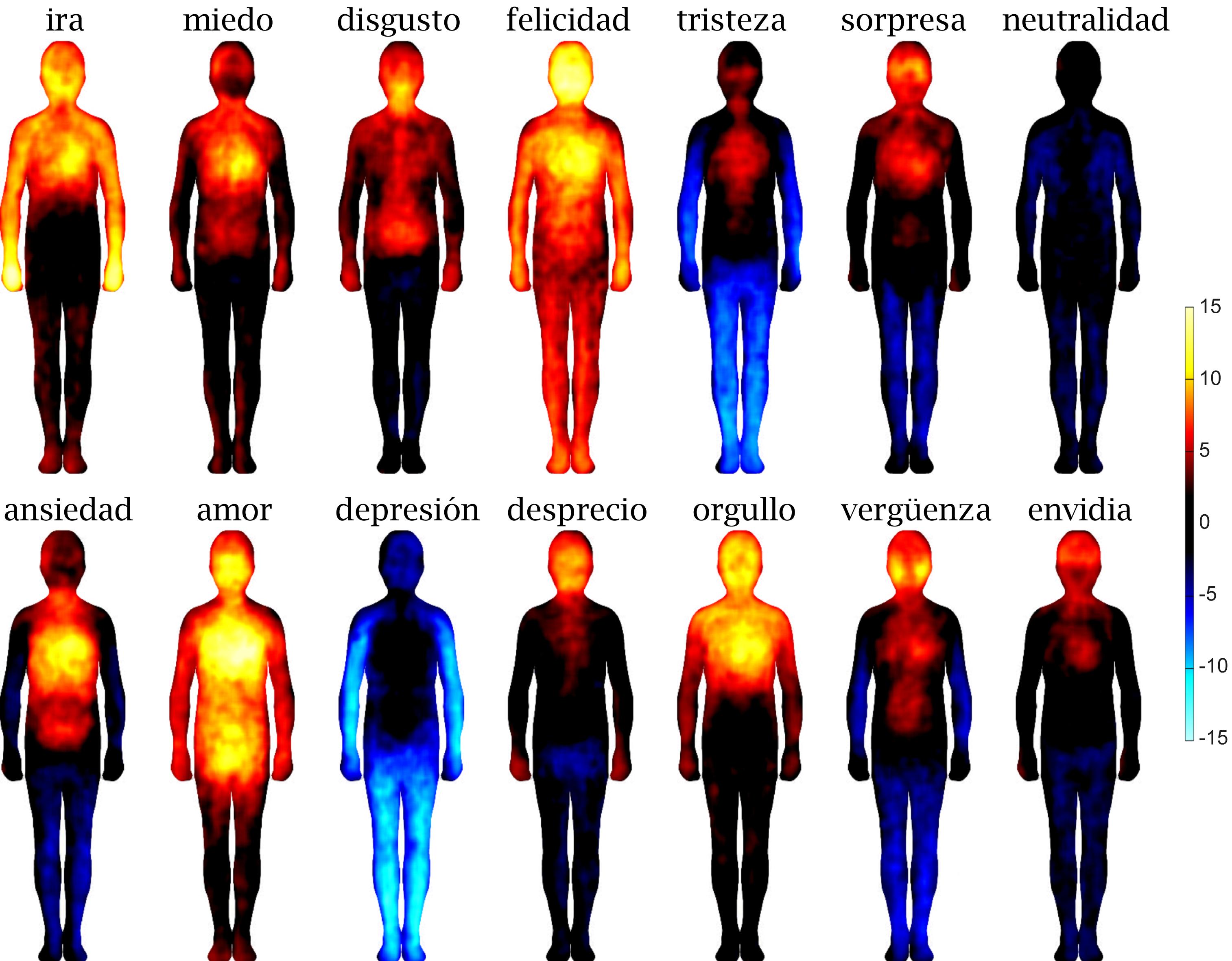 Lenguaje y etimología del cuerpo
