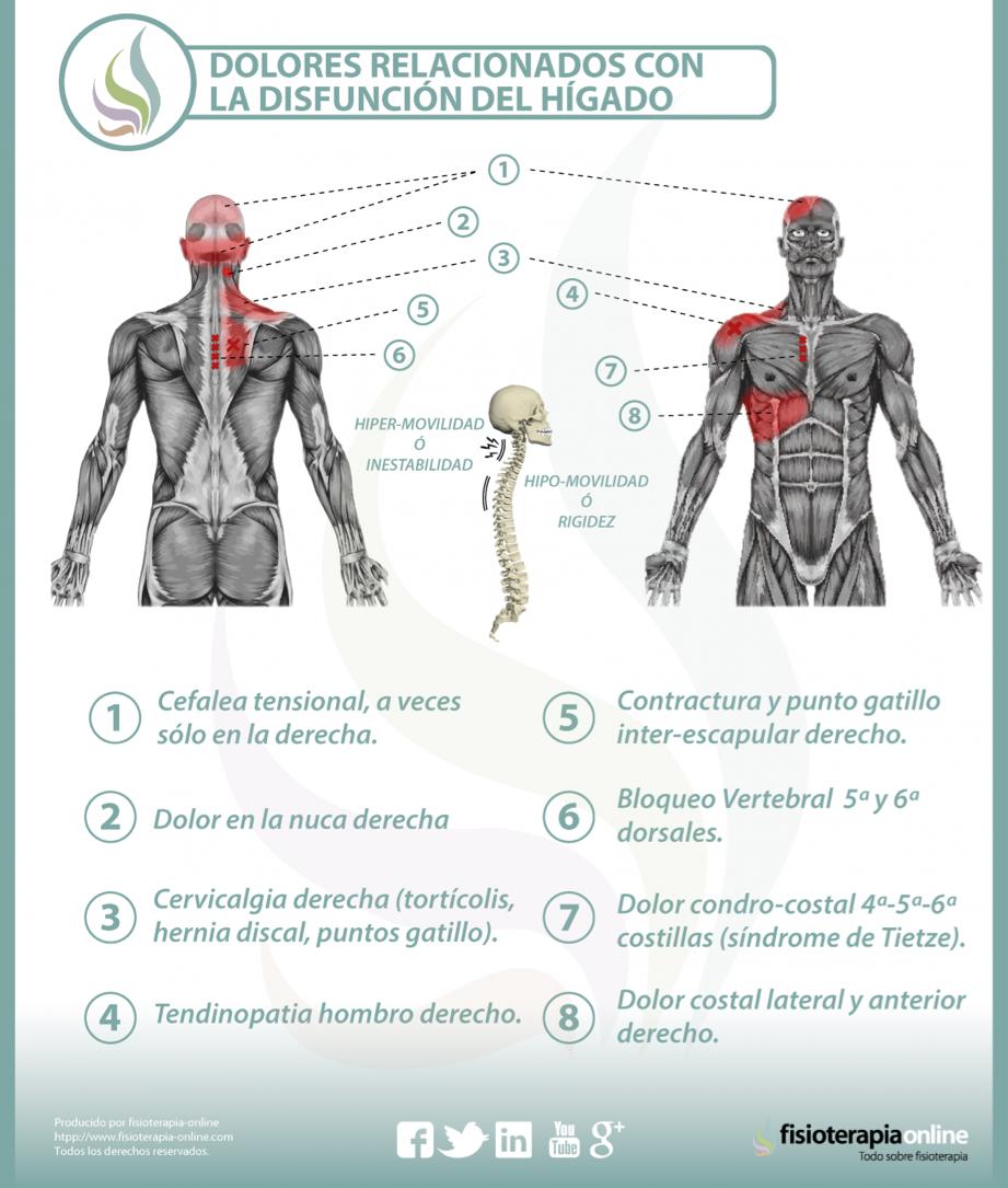 Alimentación, nutrición y limpieza para la disfunción de hígado y ...