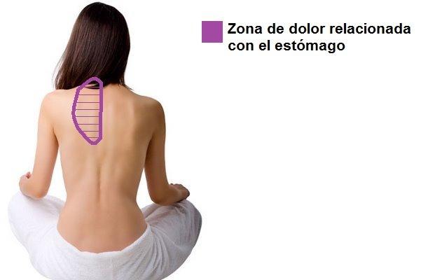 b06799879 Estómago y dolor de espalda. ¿Qué relación tienen? | FisioOnline
