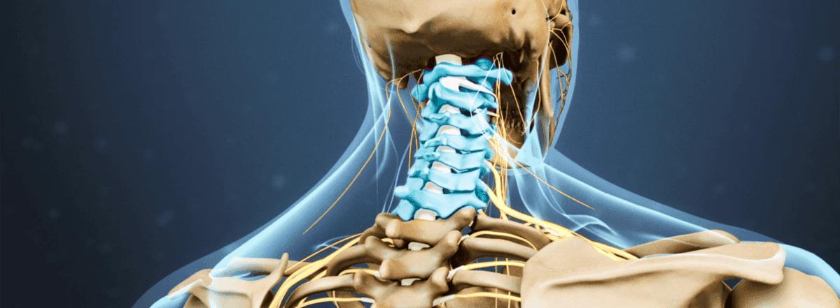 ejercicios para cervicales con foam roller