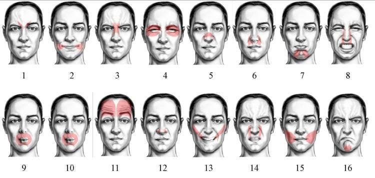 Ejercicios mímica facial
