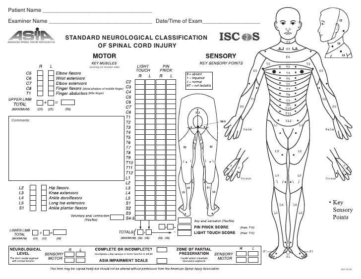 escala asia lesion medular