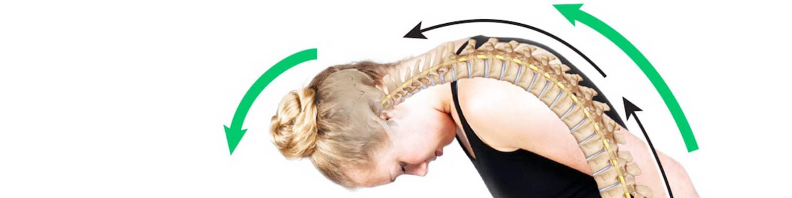 Movilización del sistema nervioso - Ejercicios neurodinámicos