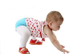 gateo de bebé