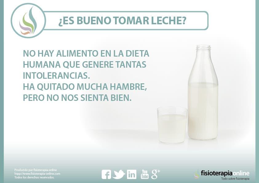 ¿Es bueno tomar leche? Te contamos por qué no   FisioOnline
