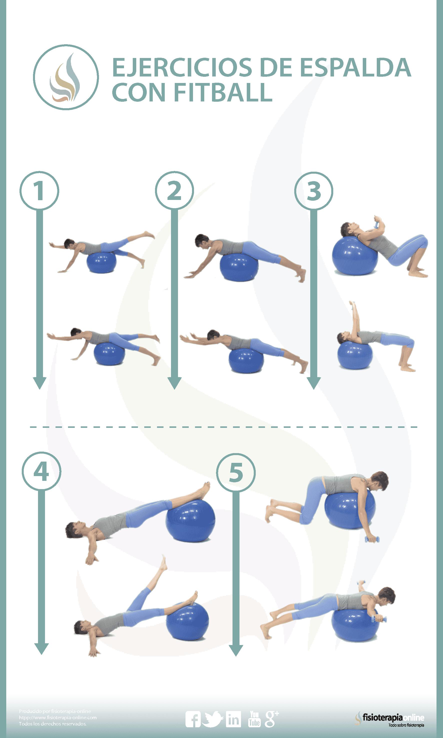 5 ejercicios para tonificar tu espalda con fitball | FisioOnline