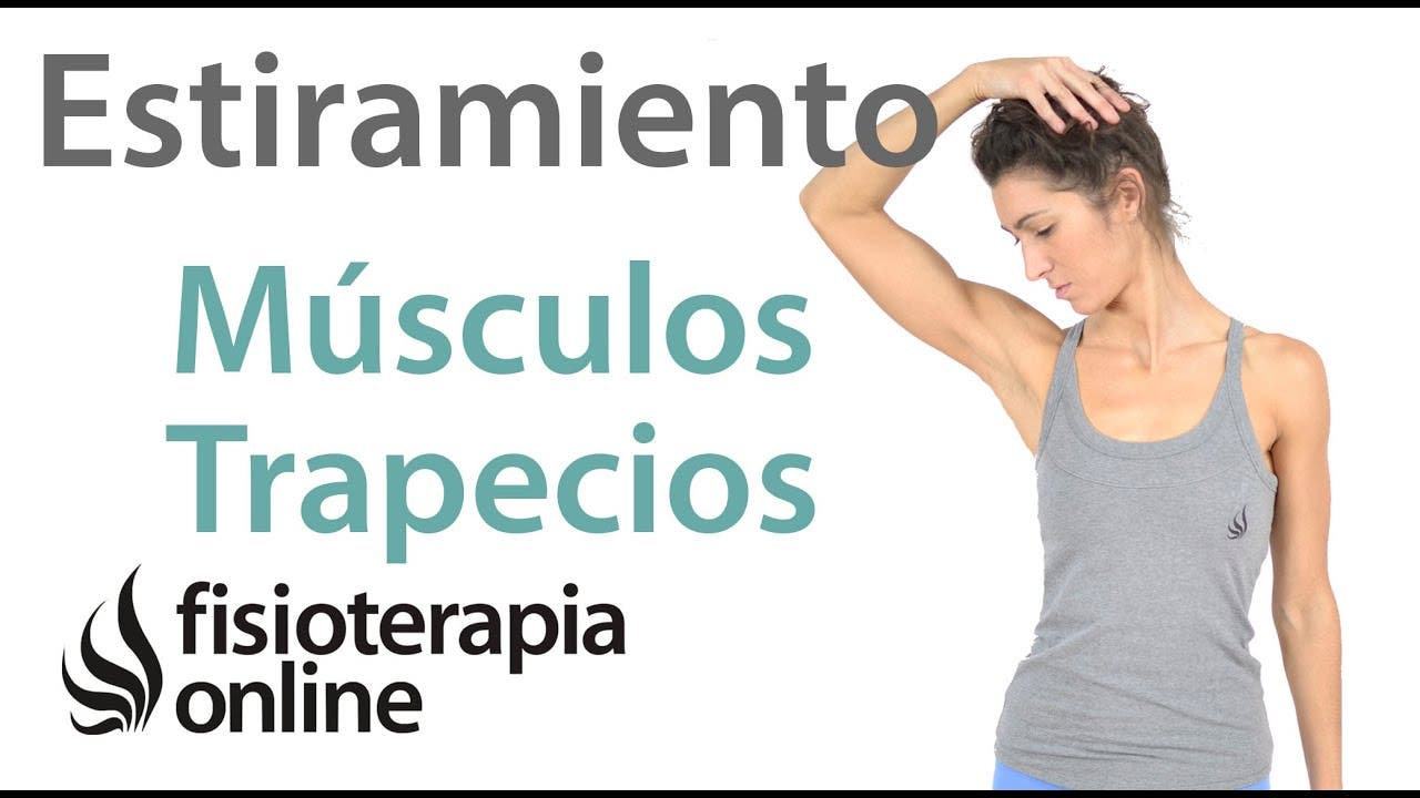 Estiramientos cervicales - Músculos escalenos | FisioOnline