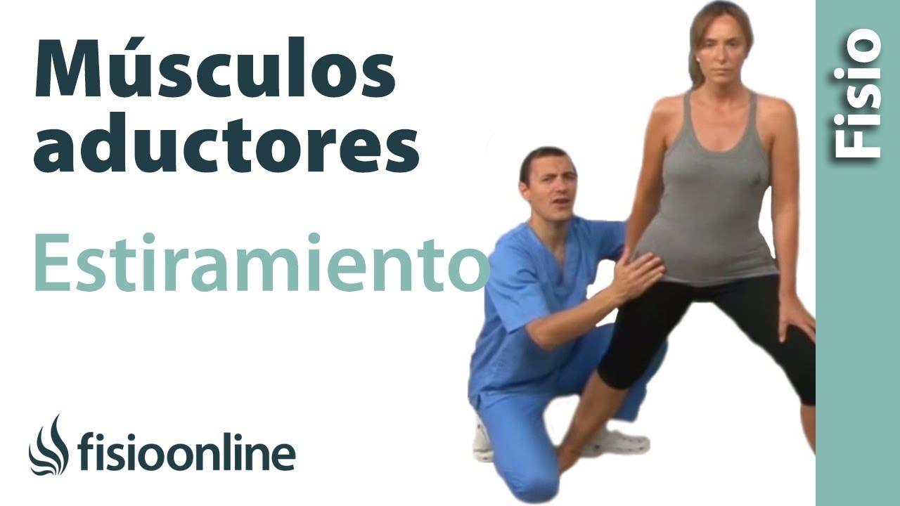 Estiramiento de los aductores | Fisioterapia Online