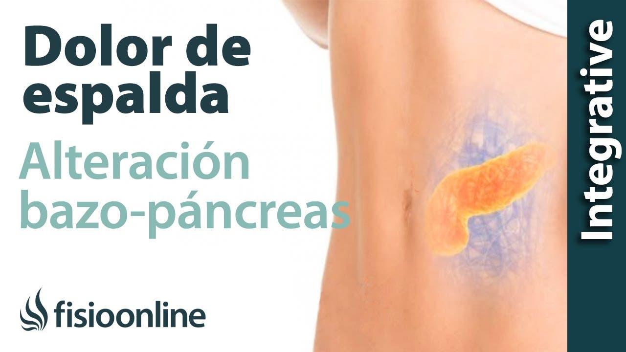 Bazo-páncreas y dolor de espalda. - ¿Cómo se relacionan? | FisioOnline