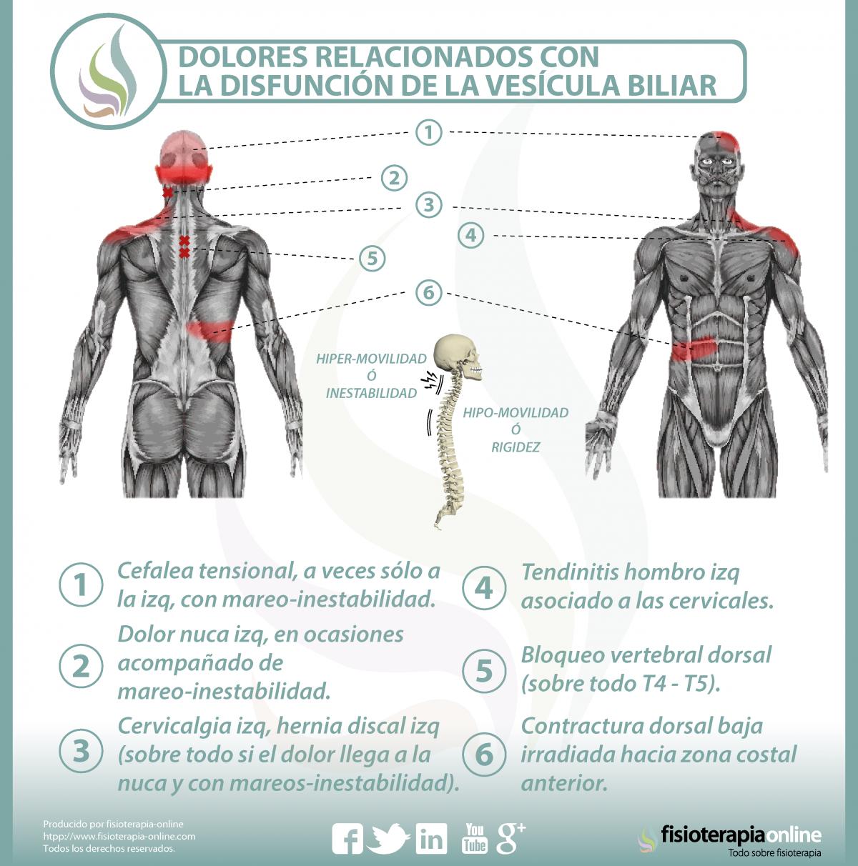 Vesícula biliar y dolor de espalda dorsal y cervical - ¿Qué relación ...