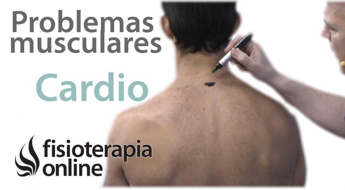 palpitaciones en el oido izquierdo causas