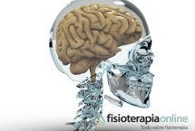 Cerebro y ordenador; Parecidos pero diferentes