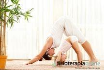 Ejercicios para mantener tu espalda sana y sin dolor