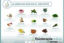 Plantas medicinales y antibióticos naturales.