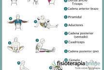 Ejercítate y estira, la mejor forma de evitar lesiones y mantenerte ágil