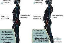 Observa la gran importancia de la correcta postura corporal para evitar lesiones y mejorar tu salud