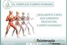 El complejo cuerpo humano