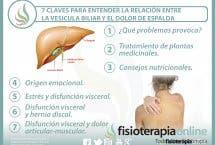7 claves para entender la relación  entre la vesícula biliar y el dolor de espalda