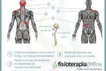 Relación entre vesícula y dolor de espalda