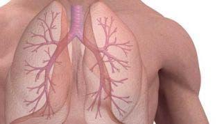 ¿Qué son los Volúmenes pulmonares?