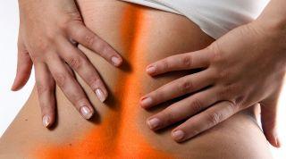 Estiramientos musculares en la prevención de la lumbalgia (lumbago). Importancia y técnicas de estiramiento