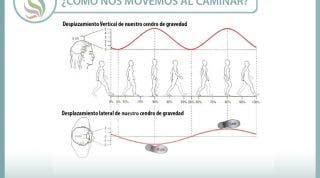 ¿Cómo caminamos? Variaciones del centro de gravedad al caminar