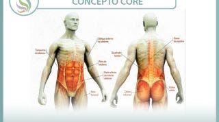 Concepto CORE. ¿Qué nos aporta?¿Cómo nos ayuda a fortalecer la musculatura de la faja abdominal y estabilizadora lumbar?