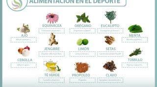 Plantas medicinales y antibióticos naturales