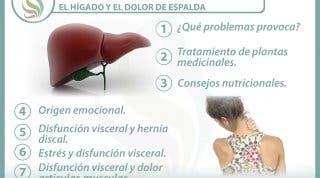 7 claves para entender y tratar la relación  entre el hígado y el dolor de espalda