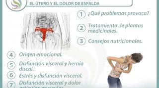 7 claves para entender la relación  entre el útero y el dolor de espalda