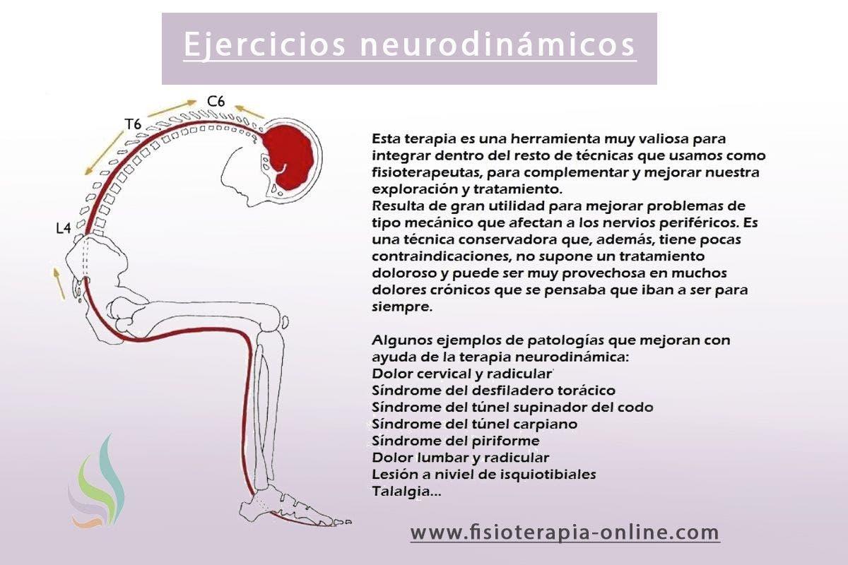 Neurodinámica o movilización del sistema nervioso. ¿Que es y para que sirve?