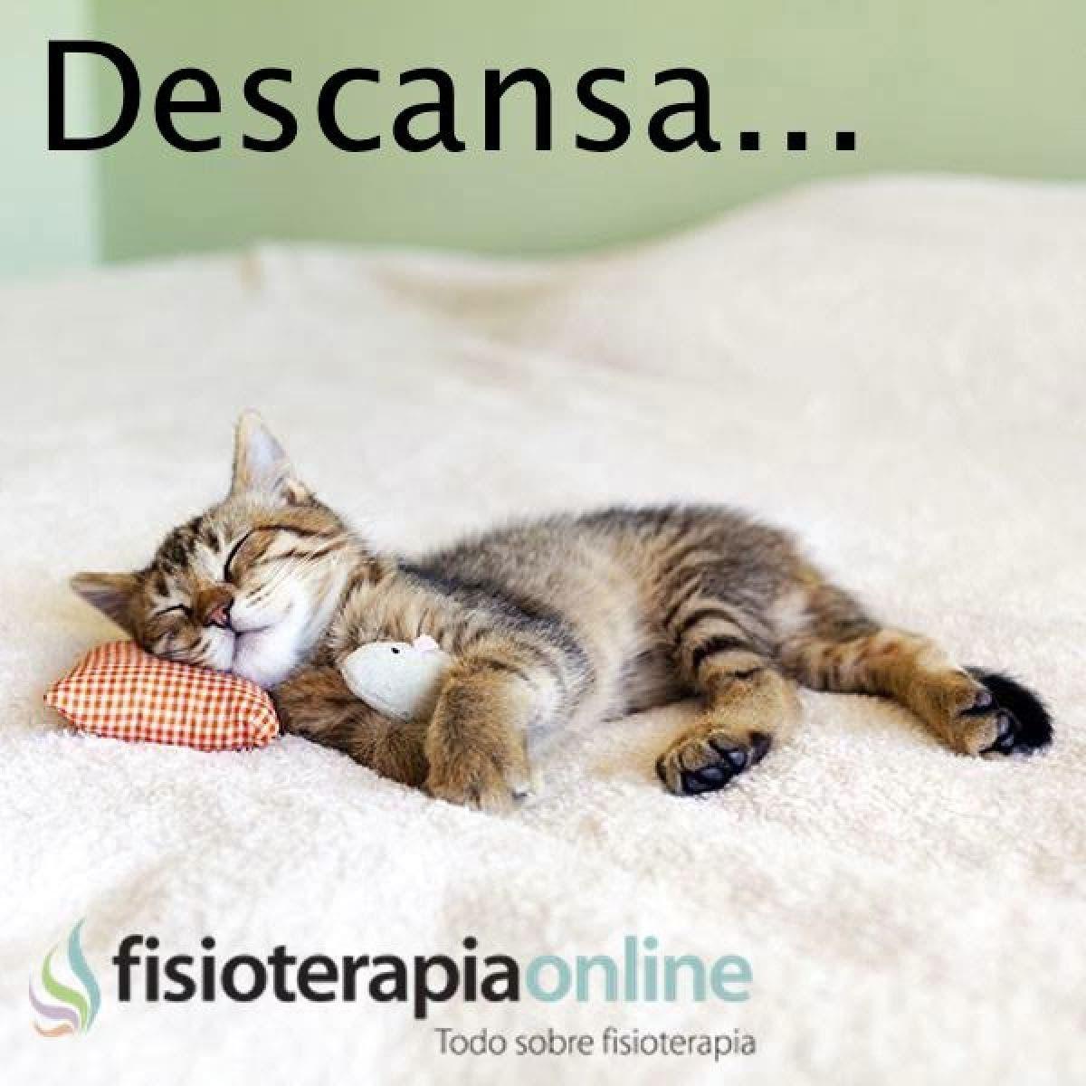 Dormir y descansar es fundamental, no lo olvides