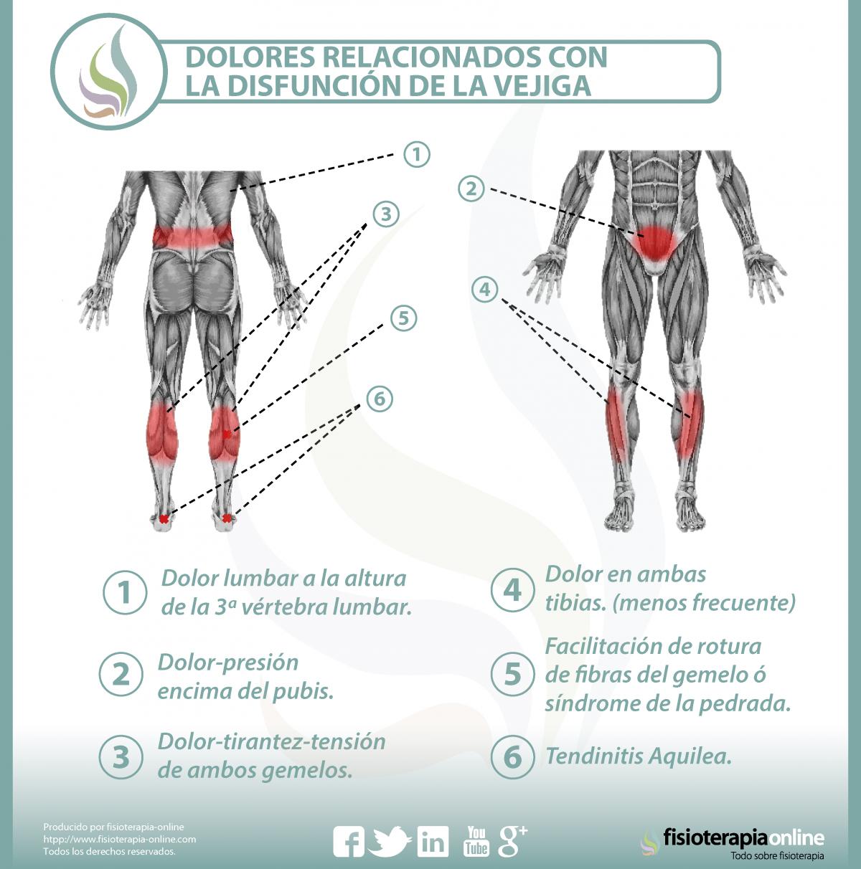 El complejo de los ejercicios a la osteocondrosis lumbar el tratamiento