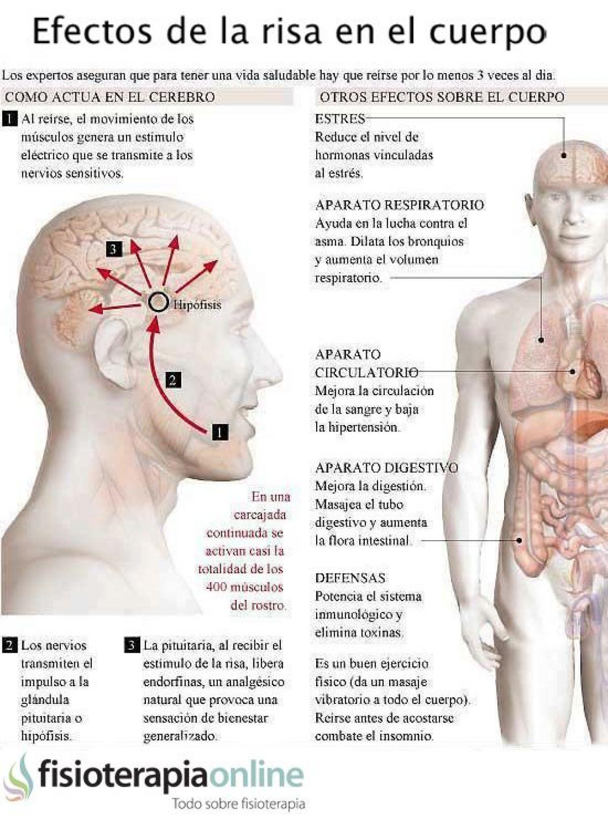 La risa y sus efectos beneficiosos en el cuerpo y la salud