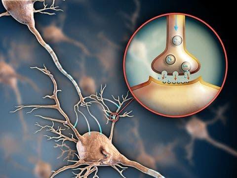 fisioterapia en neurología o neurológica