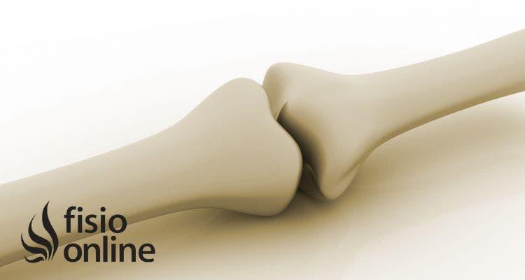 Cartílago de crecimiento. ¿Por qué es tan importante en el crecimiento de los huesos?