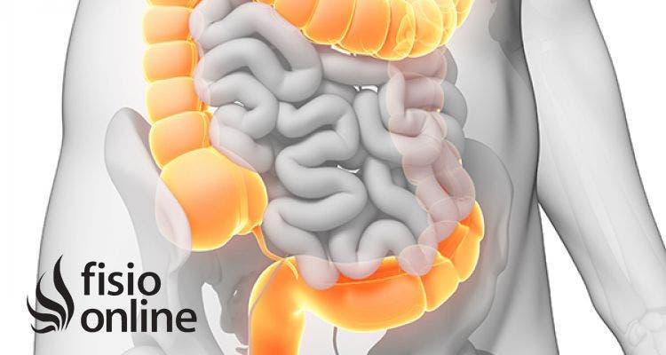 Grueso inflama intestino porque el se