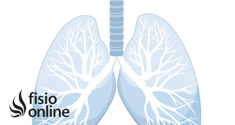 ¿cómo puedo obtener mejores pulmones?