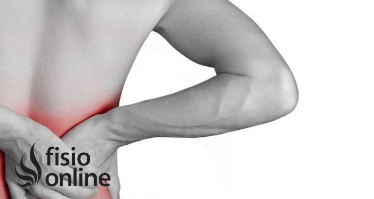 Tres músculos clave en el tratamiento del dolor lumbar o lumbalgia.