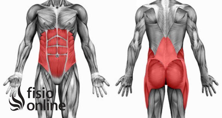 Concepto Core: Estabilización lumbopélvica | Fisioterapia Online