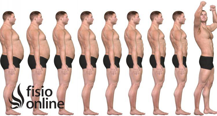 Artrosis y sobrepeso... ¿de verdad es el problema?