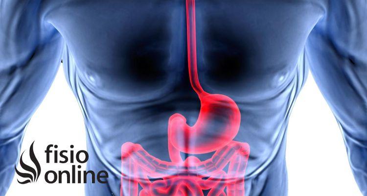 Síndrome de intestino permeable.
