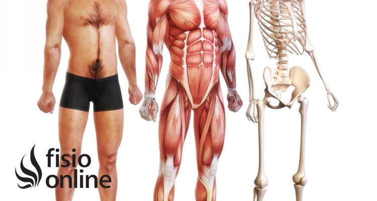 Diafreoterapia - Extracto de una sesión de trabajo corporal