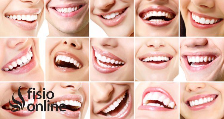 Trabajo combinado de osteopatía y odontología en las alteraciones temporomandibulares, oclusión y mandíbula