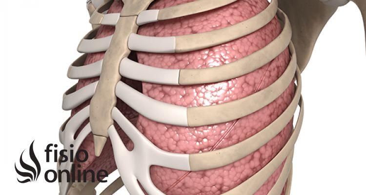 El control de la respiración | FisioOnline