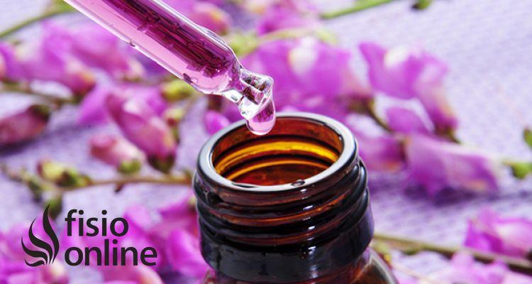 La terapia floral ¿Funciona?