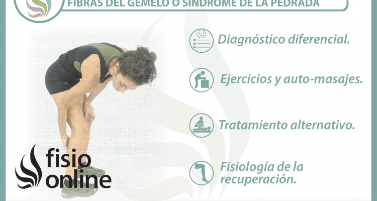 4 claves para entender y tratar una rotura de fibras del gemelo o síndrome de la pedrada