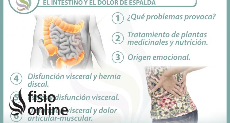 6 claves para entender la relación  entre el intestino  y el dolor de espalda