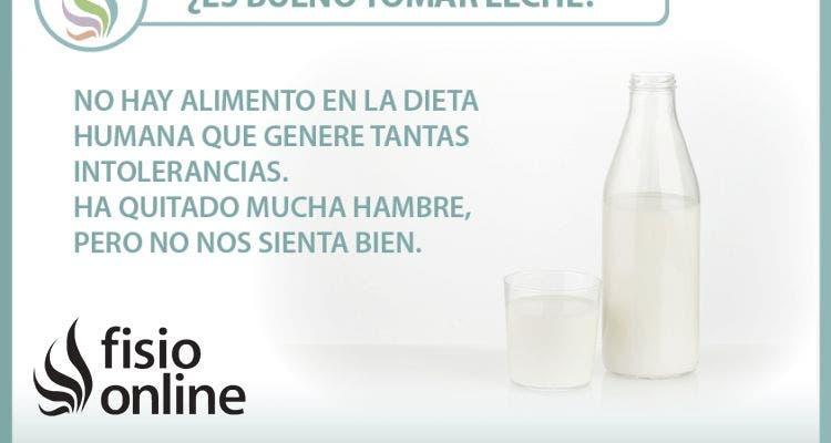 ¿Es bueno tomar leche? Te contamos por qué no