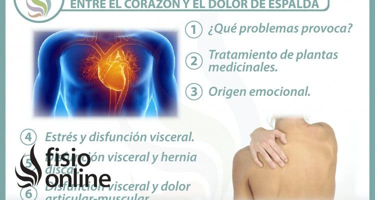 6 claves para entender la relación  entre el corazón y el dolor de espalda